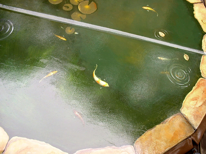 Adrian card decorative painting gallery miscellany koi for Decorative fish pond covers